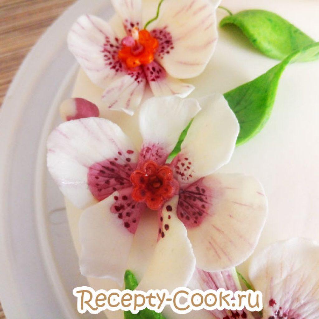 Орхидея из мастики мастер класс фото