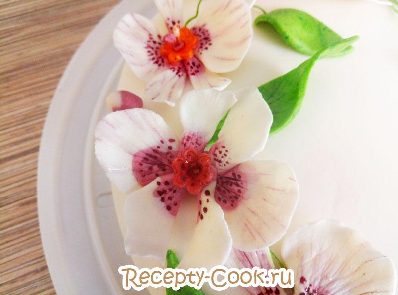 цветы из мастики орхидея