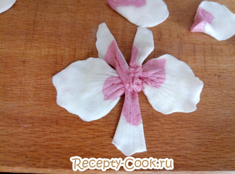 орхидея из мастики мастер