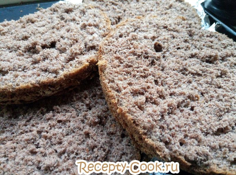 генуэзский бисквит шоколадный