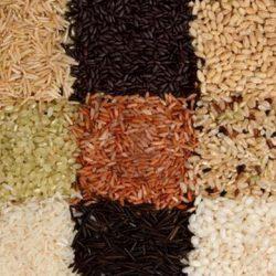 какой рис для плова